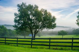 A fence and farmland in central Florida near Orlando at dawn